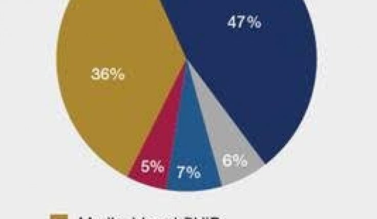Medicaid Pie Chart Kids Childrens Physicians Medical Group